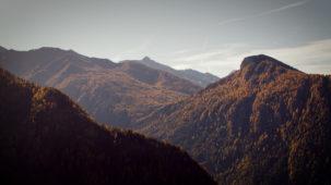 Massive mixed autumn alpine forest