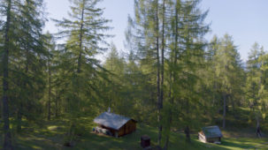 Huts and spring larch forest